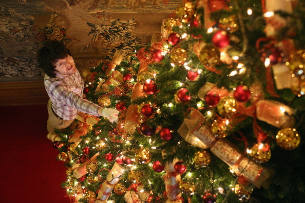 Christmas tree with boy