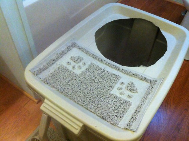 DIY Project TopEntry Litter Box